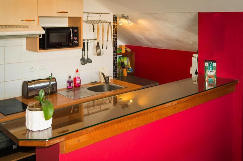 Cucina all'americana Affitto Appartamento 85760 Saint Leu